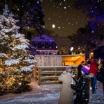 2017 Tree lighting-1