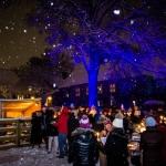 2017 Tree lighting-4