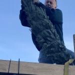 1-Unloading the trees-Jan Thalheim