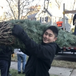 1-Unloading the trees-Student