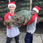 1-Unloading the trees-Students